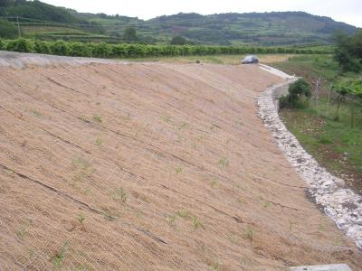 Sistemazione stradale con Recs Cocco e Gabbionata su pali
