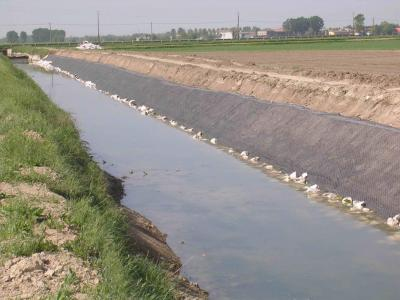 Canale di Bonifica - Geocomposito Antinutria Antigambero - posa