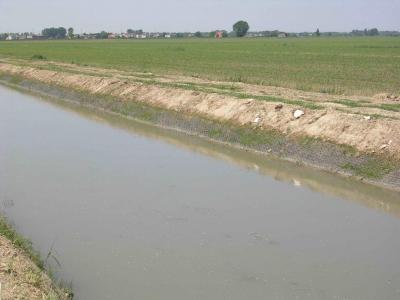 Canale di Bonifica - Geocomposito Antinutria Antigambero - fine lavori